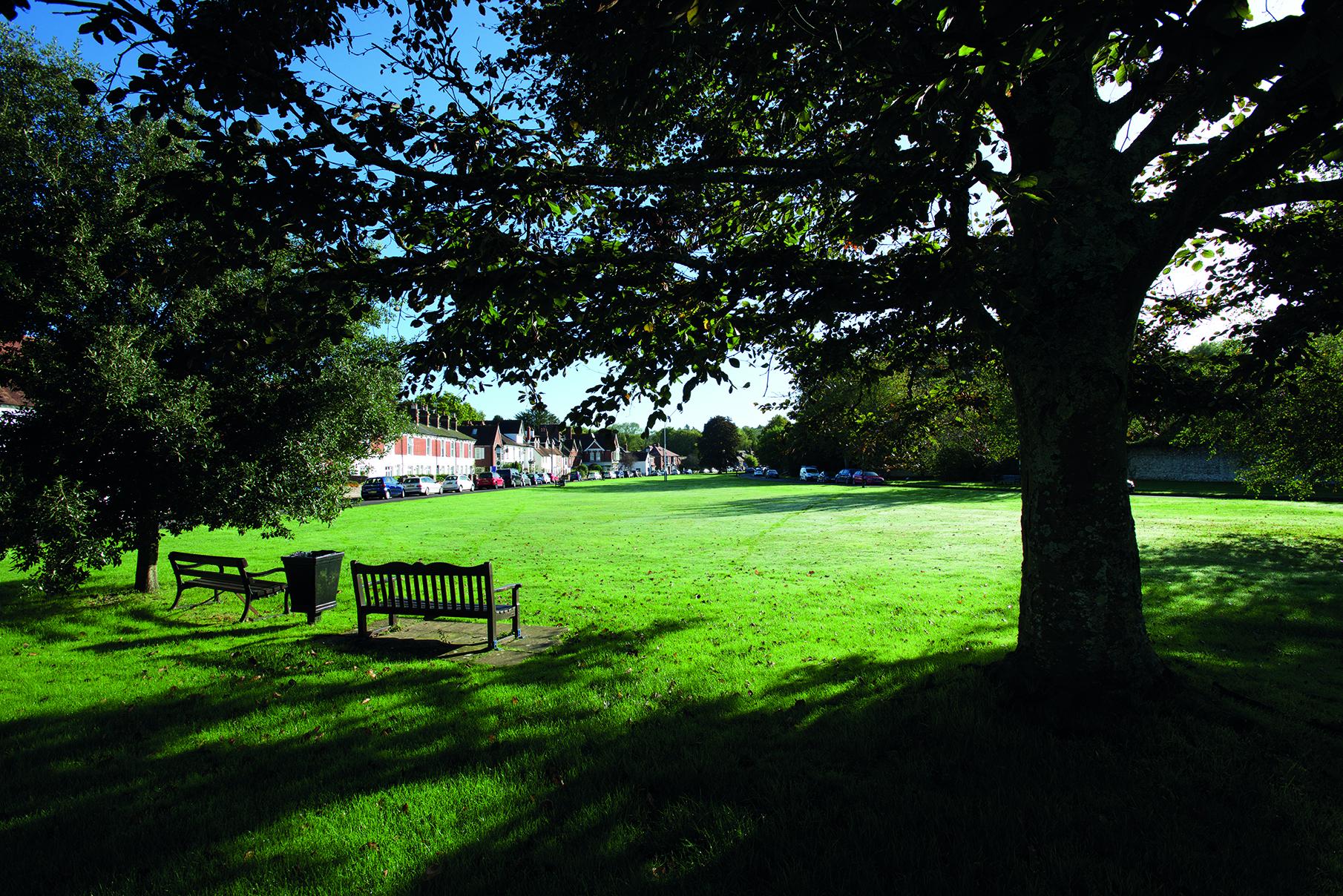 Rowlands Castle park